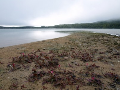 Moody Lake Louise