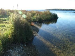 Lake Huron Morning