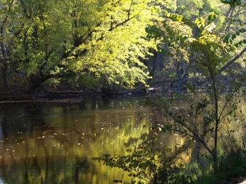 Along the Lansing River Trail