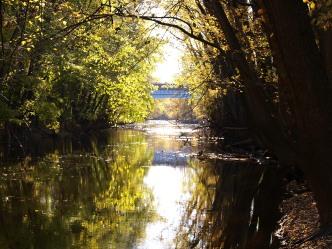 Bridge Over the Red Cedar River
