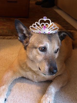 Princess Max