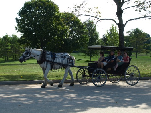SingleHorseCarriage