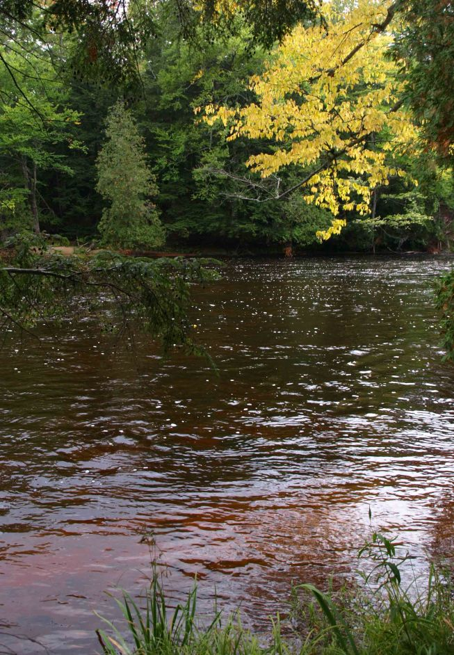 Tahquamenon River