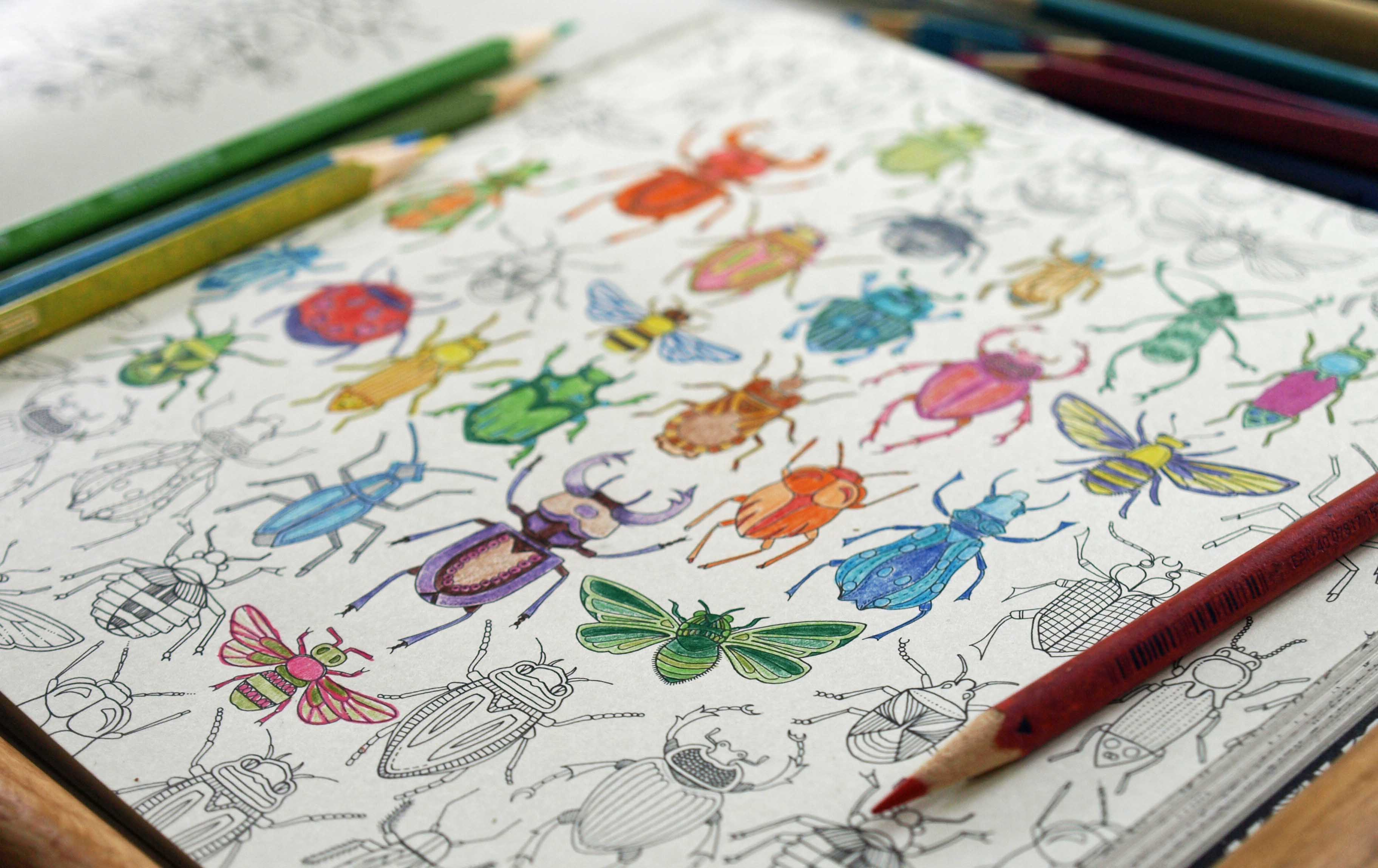 The Coloring Bug