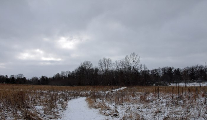 Fenner Nature Center, January 2016