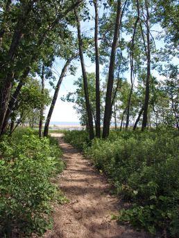 A Path to the Saginaw Bay