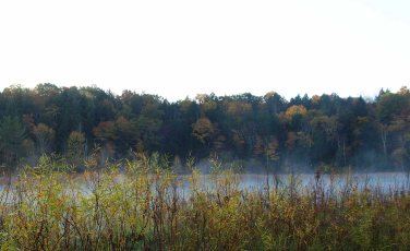 Along the misty Manistee River, Lower Peninsula, October 2016