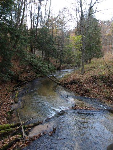 Slagle Creek, Manistee River Trail, Lower Peninsula, October 2016